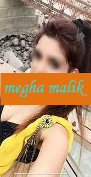 housewife escorts in nehru place